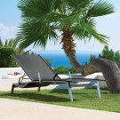 Fusion chaise lounge